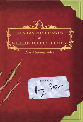 Fantastic-Beasts-and-Where-to-Find-Them-harry-potter-26796486-940-1370
