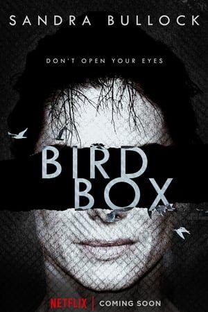 Il film diretto da Susanne Bier: Bird Box con Sandra Bullock