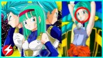 Dragon Ball Z: Bra, la principessa dei Saiyan