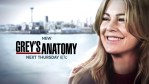 Grey's Anatomy: rinnovo ufficiale per altre due stagioni