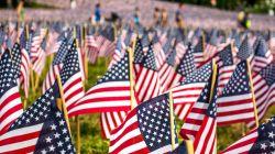 Memorial Day, i 5 film da vedere sulla guerra contro la guerra