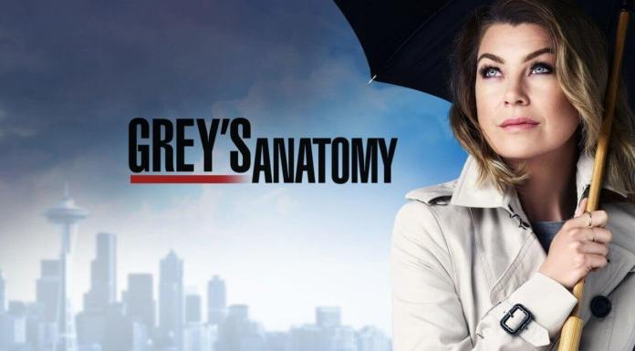 grey's anatomy 16 richard webber episodio speciale