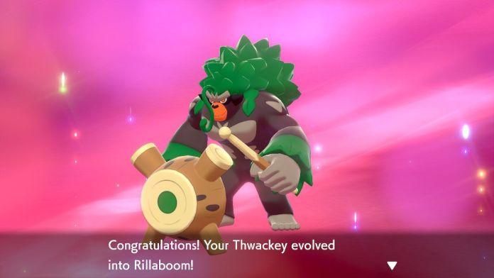 Pokémon Zacian Zamazenta