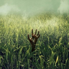 In the Tall Grass – Continua l'amore tra Netflix e le opere di Stephen King