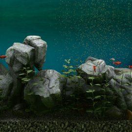 Biotope Aquarium Simulator – Recensione – PC