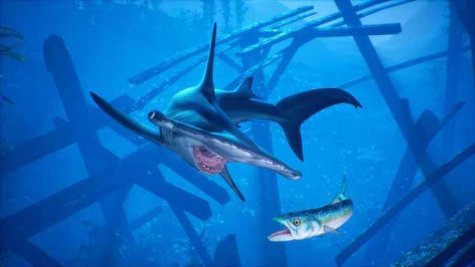 Diventa il più feroce predatore dei mari in Maneater, il primo ShARkPG è tra noi! Comunicati Stampa Videogames