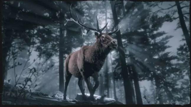 Red Dead Online: questa settimana Bonus per i Naturalisti Comunicati Stampa Videogames