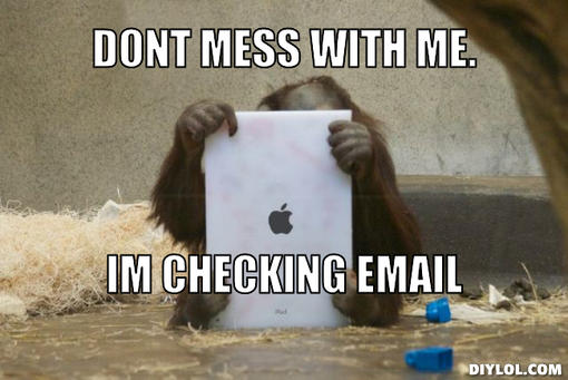 monkey-meme-generator-dont-mess-with-me-im-checking-email-bbb542