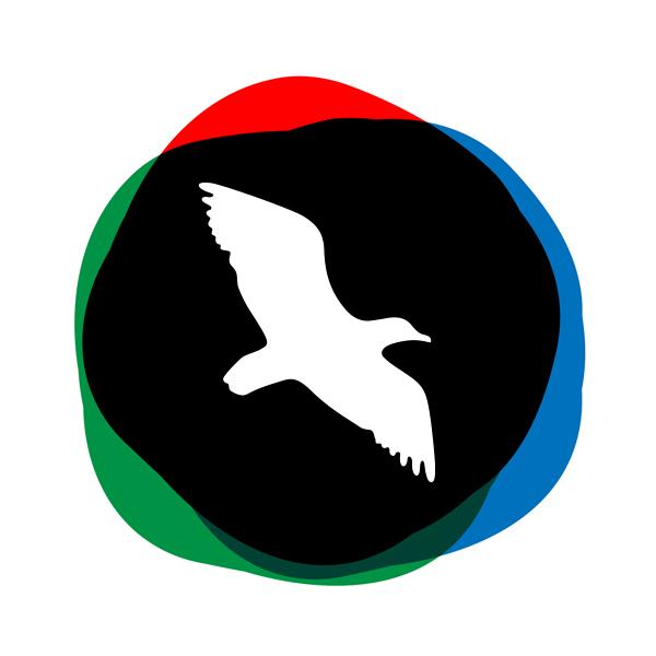 Baltasis kiras logo