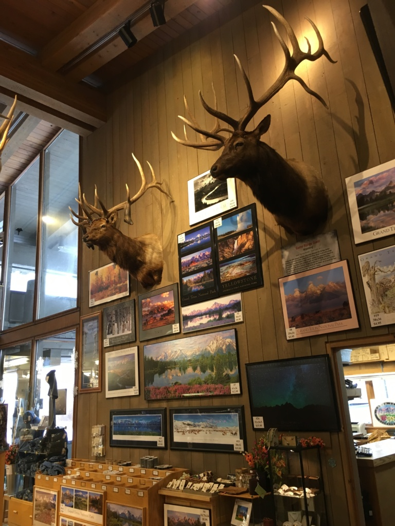 A view from inside the Jackson Hole & Greater Yellowstone Visitor Center
