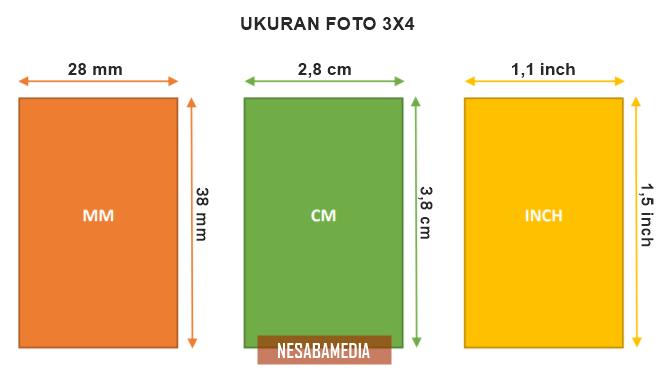 Ukuran Foto 3x4 Dalam Cm Mm Dan Inch Sesuai Standar Resmi