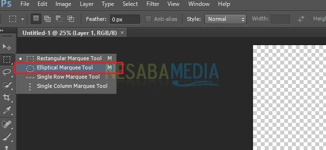 eliiptical marquee tool