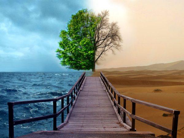 pengertian lingkungan adalah