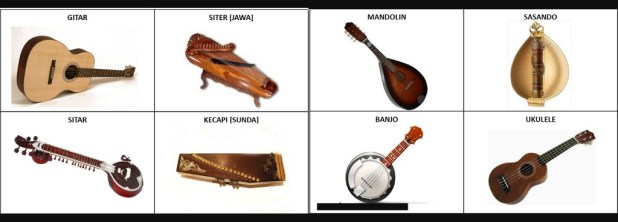 type of stringed musical instruments