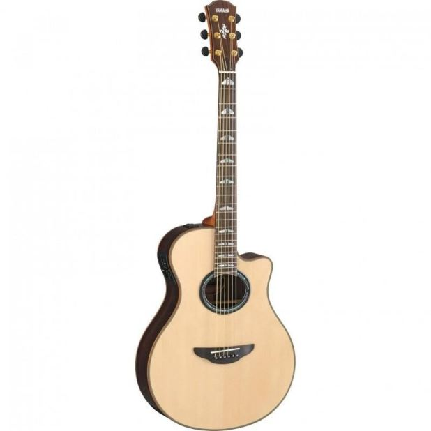Type of stringed instrument