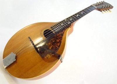 Mandolin - Melodic Musical Instrument