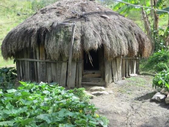 rumah adat Papua Wamai