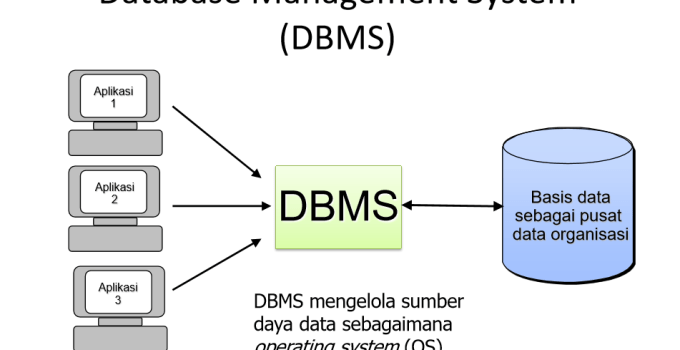 Contoh Aplikasi DBMS