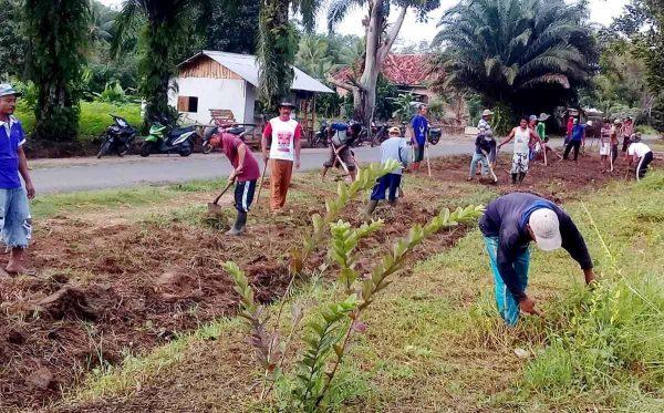 Contoh Kearifan Lokal di Sulawesi Selatan