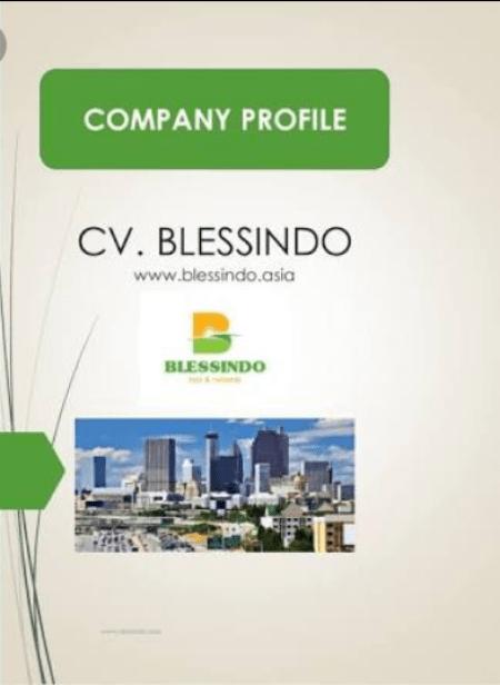 Company Profile Sederhana dan Warna Elegan