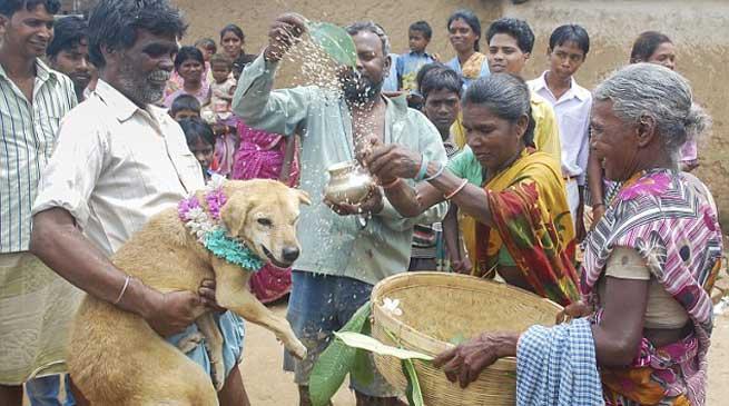 ऐसा गाँव जहां बच्चों की शादी कुत्ते के साथ की जाती है