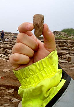 The miniature flint axe discovered by Woody yesterday.