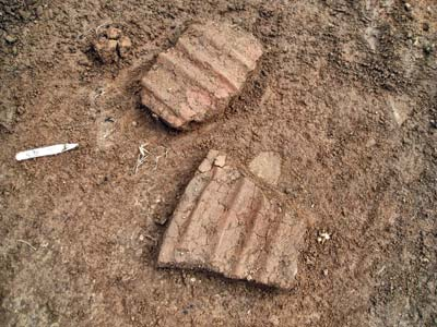 The multi-cordoned sherds revealed by Toni.