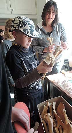 Dr Ingrid Mainland explains the value of animal bones to Daniel, a budding archaeologist.