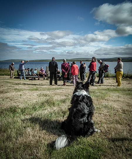 Bryn, the site dog, keeps an eye on proceedings as director Nick goes through health and safety briefing.