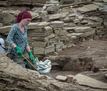 Dig Diary – Day Three in pictures…