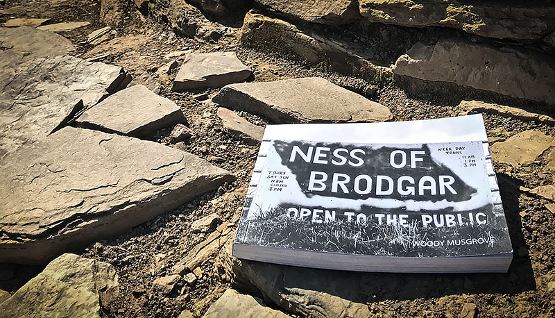 Selling like hot cakes - Woody Musgrove's photographic record of the 2017 excavation. Get your copy now (and help boost excavation funds in the process) before stocks run out.