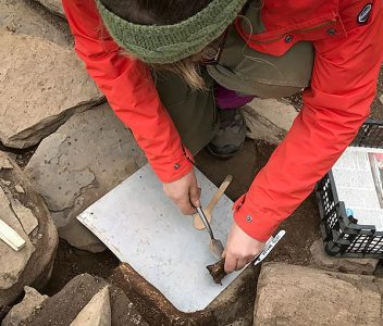 Video – antler excavation in Structure Eight