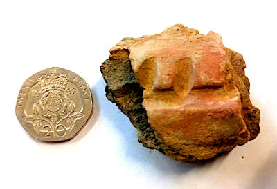 The coloured pottery sherd from Structure Twelve.