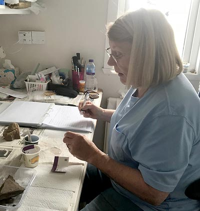 Dr Johnson at work in dig HQ. (Jo Bourne)