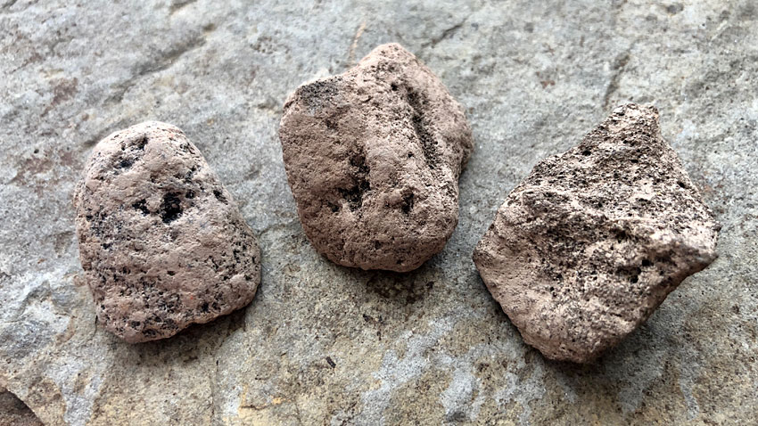 Three examples of pumice found at the Ness of Brodgar. (Sigurd Towrie)
