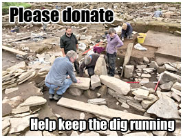 Please donate - help keep the dig running