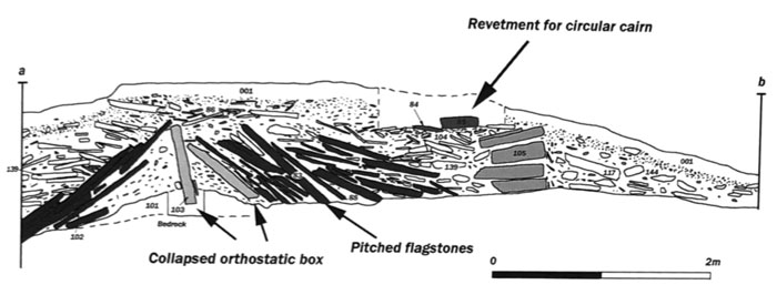 Section across the body of the Vestrafiold long cairn, showing the box-construction method of construction used. (After Richards et al. 2013)