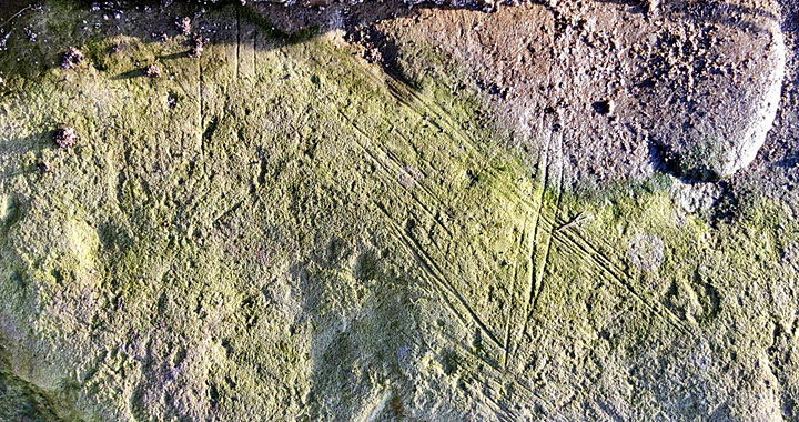 The incised stone found at the Bay of Skaill, Sandwick, Orkney, in January 2021. (Sigurd Towrie)