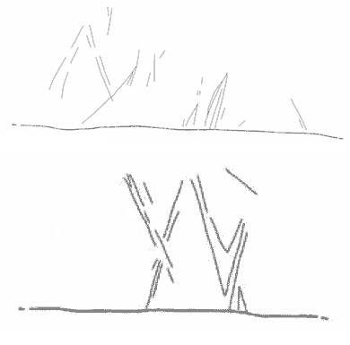 Wideford incised markings