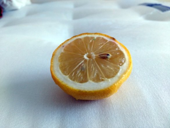 lemon juice to remove mattress smells