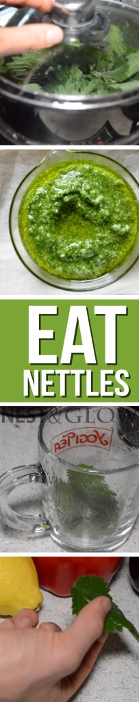 how to eat healthy nettles