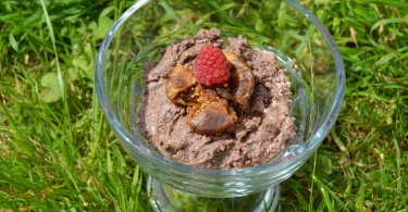 Quick Raw Chocolate Spread with a fig and rasberry