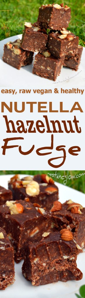 raw vegan chocolate nutella fudge