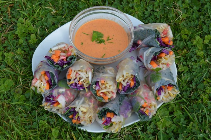 Winter Rolls with Raw Sweet Chilli Dip From above