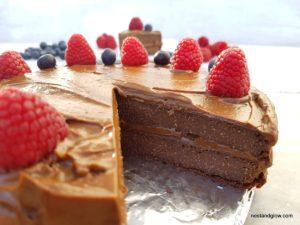 Chocolate cake with raw avocado frosting
