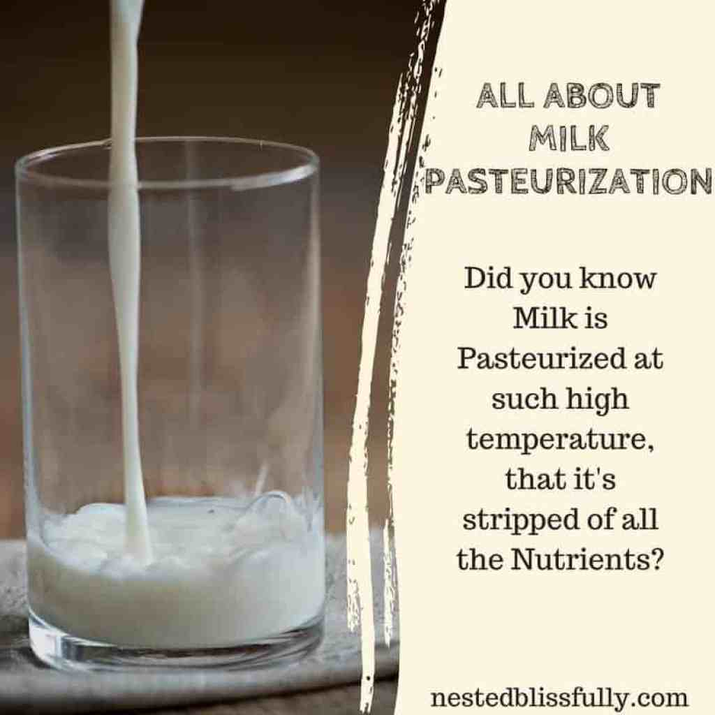 All about Ultra Pasteurized Milk. What is ultra pasteurized milk, types of milk pasteurization, is ultra pasteurized milk good for you, and ultra pasteurized vs pasteurized milk. why does ultra pasteurized milk taste different, and why is organic milk ultra pasteurized.