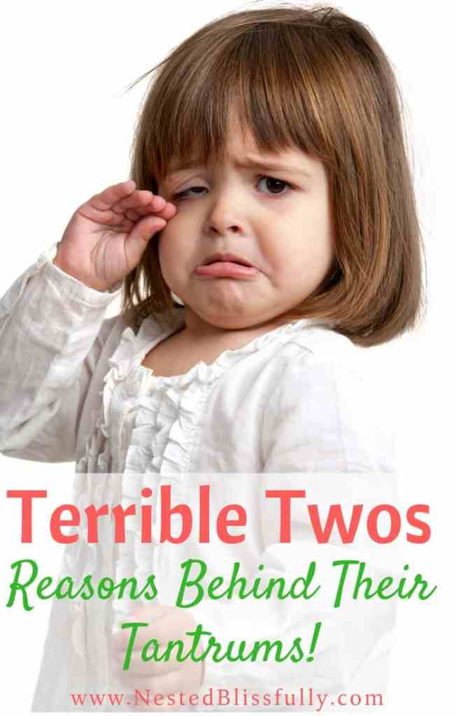 2 yr old throwing tantrums