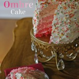 Five Layer Ombre Cake I Nesting With Style