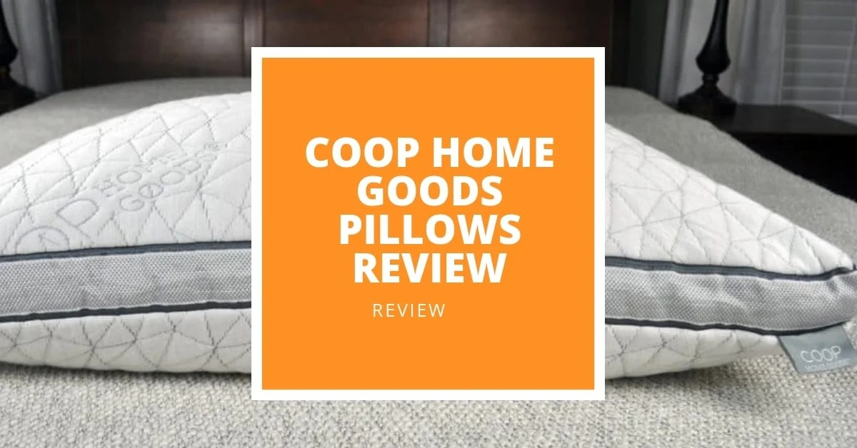 4 best coop home goods pillows in 2021