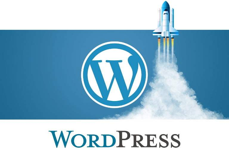 wordpress guia optimizacion